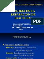 biologiaenreparaciondefracturas
