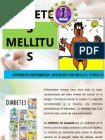 diabetesmellitus-imprimir