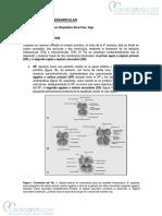 comunicacion_interauricular.pdf