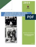 Rejilla de Mercado por NSE 2014 cc.pdf