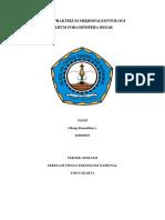 FORAMINIFERA BESAR.docx