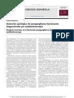Resección Quirúrgica de Paraganglioma Funcionante Diagnosticado Por Mediastinoscopia