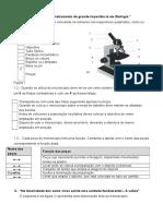 15899105-Teste-avaliacao-microscopio-celula-classificacao-SV-5º-ano.doc