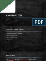 Presentación  MARGINACIÓN.pptx