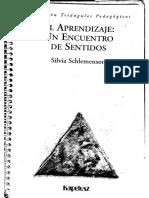 El Aprendizaje, Un Encuentro de Sentidos. S. Schlemenson