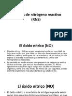 Especies de Nitrógeno Reactivo RNS