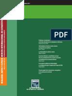 la informalidad en america latina.pdf