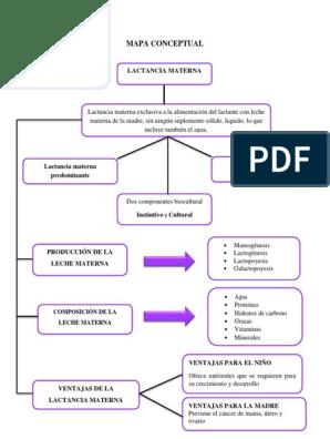 tipos de succion en la lactancia materna pdf