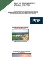 Análisis de Los Biocombustibles Líquidos