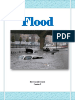 flood.docx