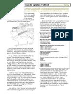 Te260gNickFussball.pdf