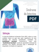Aula - Síndrome Do Intestino Curto Prova 2