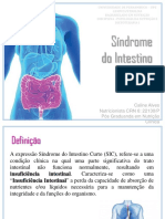 Aula - Síndrome Do Intestino Curto Prova 2
