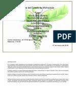 NSANJUAN_plantasvasculares