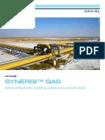Synergi Gas Brochure Tcm8 59158