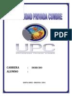 CARATULA CUMBRE.docx