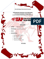 Inflacion Monografia.docx