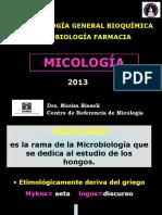 1o Clase Estructura Fungica 2013