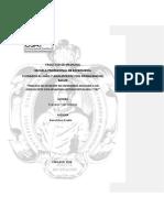 EVA.-Presentacion-PAE.docx