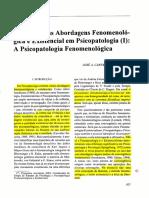 Introdução as Abordagens Fenomenológicas e Existencial Em Psicopatologia