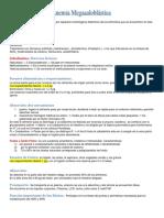 Anemia Megaloblastica (Resumen)