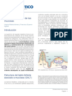 sistema-inmune-mucosas.pdf