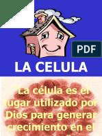 7+La+celula