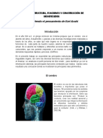 3 Cerebro Estructura y Funciones