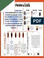 Infografia Para Entregar
