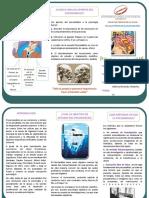 242350000-TRIPTICO-pdf