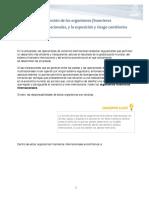 Lafuncindelosorganismosfinancierosinternacionalesylaexposicinyriesgocambiarios.pdf