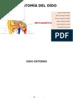 Anatomía Oído (1)