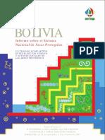Areas Protegidas de Bolivia.pdf