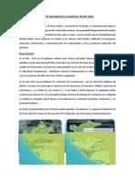 Breve Resumen de La Empresa Petro Peru