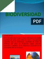 BIODIVERSIDAD presentacion 1