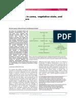 PVS_MCS_LIS_LancetN04.pdf