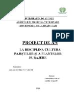 499 III Proiect Colac Cristina Nr.56