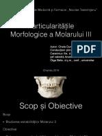 244658058-Molarul-III-pdf.pdf