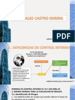 Deficiencias de Control Interno
