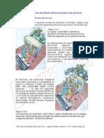 CAP7_05_5 Las Normas de DSR de Edificios