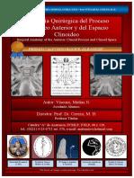 Viscuso, Matías Nicolás - Anatomía Quirúrgica del Proceso Clinoideo Anterior y del Espacio Clinoideo - Premio Alfonso Roque Albanese 2013