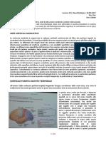 27-Fisiologia-24.05.2017