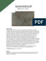 BCelular2013-2.doc