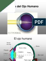 Ppios de La Luz-2-2-Optica Del Ojo