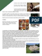 Materiales de La Artesanía Maya