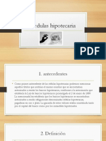 Diapositivas Expo Cedulas Hipotecaria