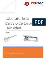 Informe Laboratorio 1 Densidad
