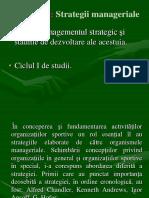 Strategii manageriale.pdf