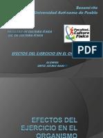 Efectosdelejercicio 151113205312 Lva1 App6892