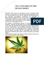 EFFECT OF CANNABIS ON THE HUMAN BODY.docx